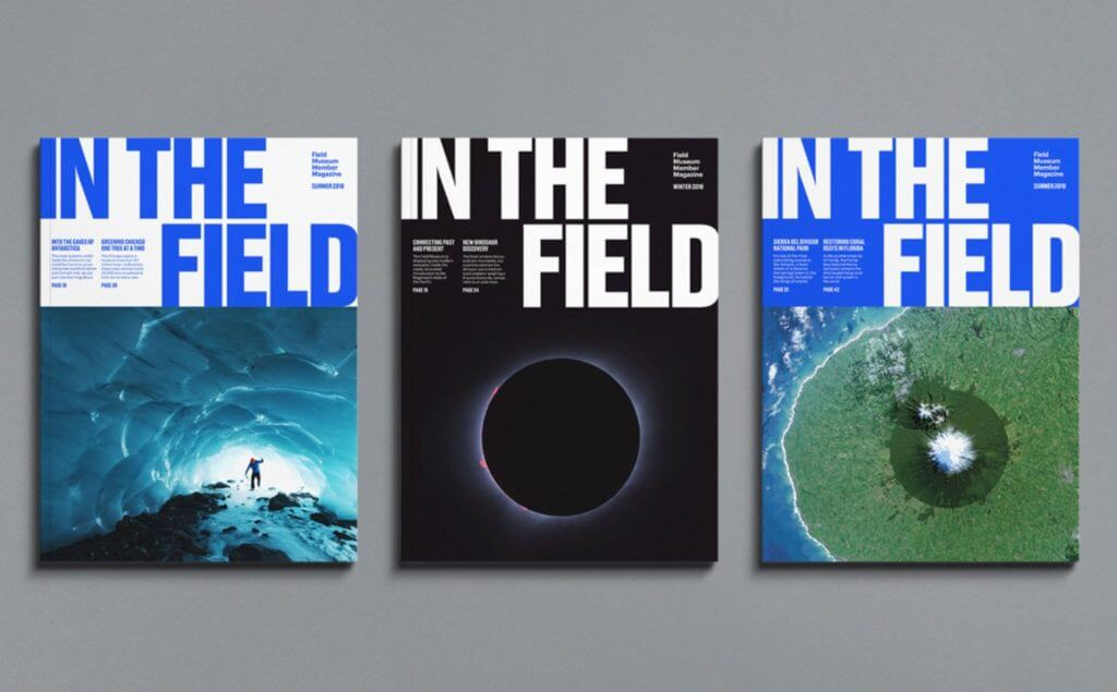 "Three books are displayed in a horizontal row, each with the large title ""In the Field"" and a featured image, including a person in a cave, a solar eclipse, and an abstract image that could be an aerial view."