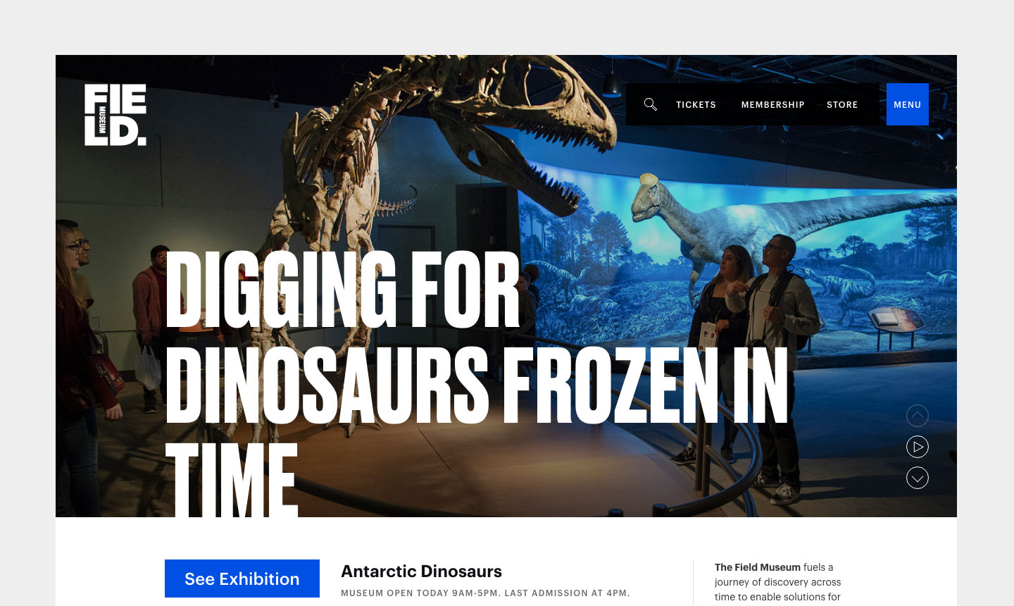 "A screenshot of the Field Museum website featuring large text ""Digging for Dinosaurs Frozen in Time"" over a full-screen background image of visitors looking at a T-rex skeleton. A small menu appears in the upper right."