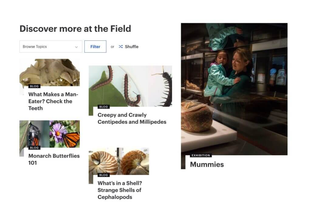"""A screenshot leads with the header """"Discover more at the Field"""" and various blocks of content—four on the left-hand side, one on the right-hand side—show images, titles, and categories."""